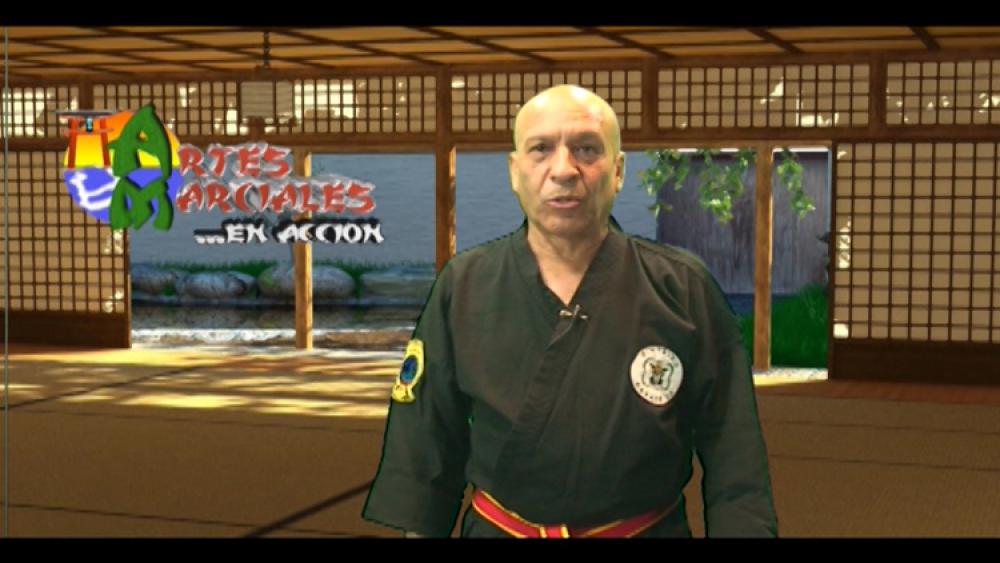 Ahora resumen torneo de Artes Marciales Club Red Dragon de Trujillo Alto